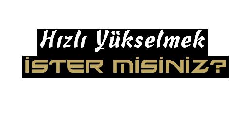ARAMA MOTORU OPTİMİZASYONU ( SEO )
